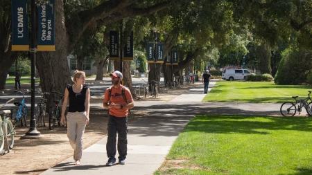 September dedicated to pedestrian safety