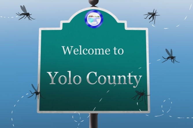 Officials warn of West Nile virus activity in Yolo, Sacramento County