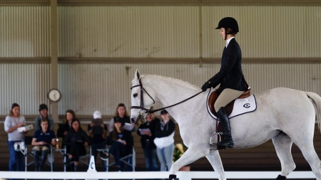 UC Davis Equestrian Team heads out of state to launch new season