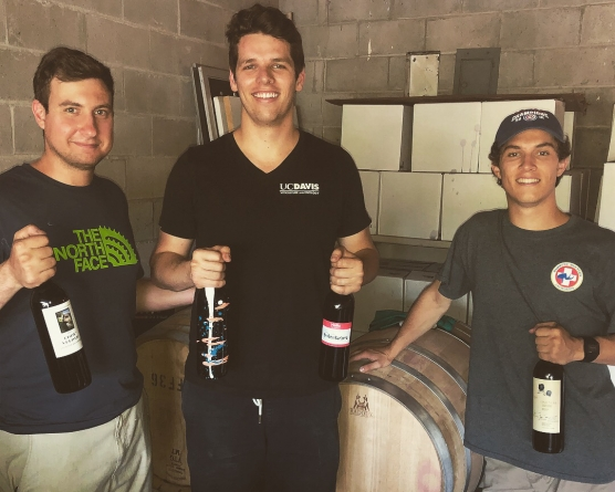 From wine to kombucha: Exploring Davis' zealous homebrew community