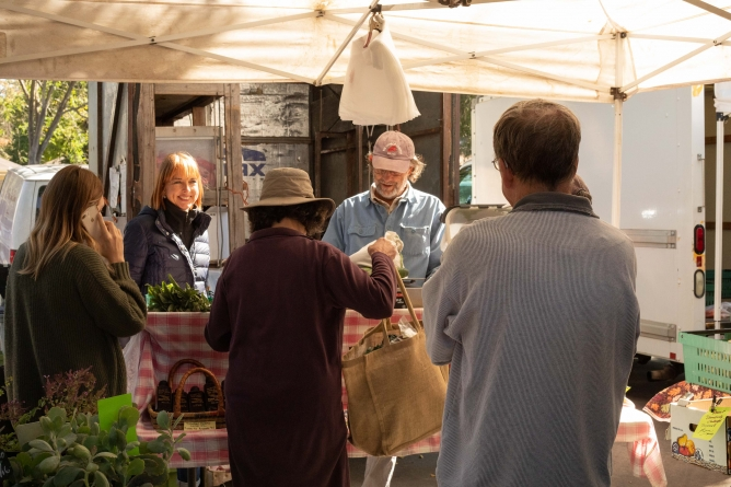 Davis Night Market offers opportunities to reduce food insecurity, food waste
