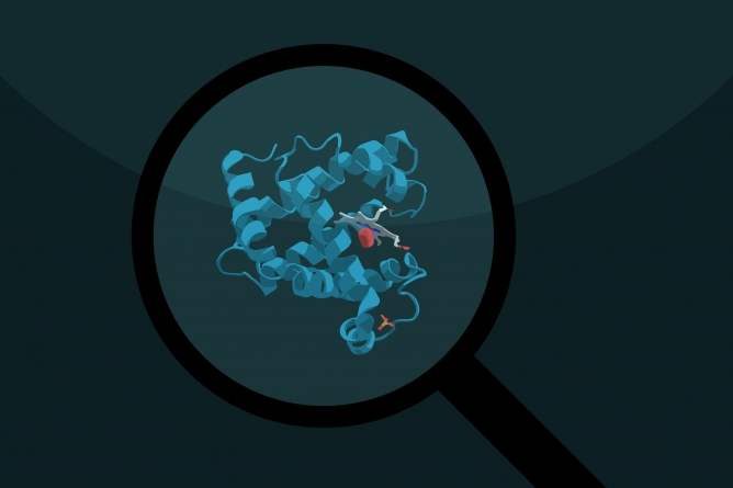 Forensic proteomics research provides new tools for crime investigations