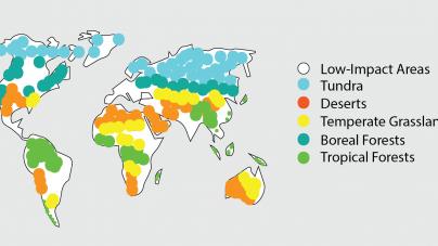 Habitat fragmentation threat to biodiversity, research shows