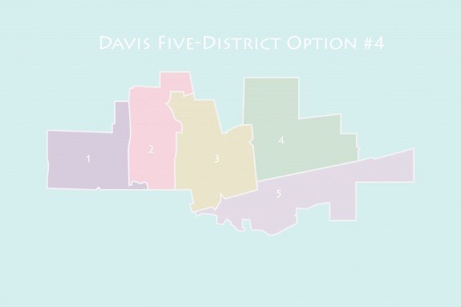City selects final, five-district map for next year's election
