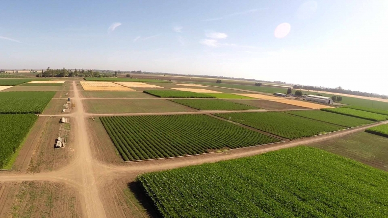 Russell Ranch: UC Davis' hallmark sustainable agricultural research center