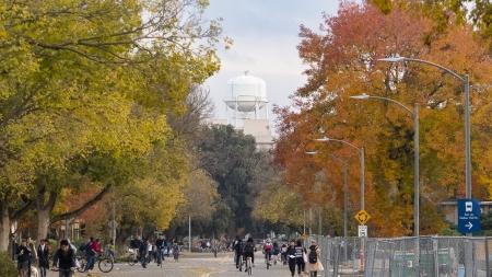 The UC Davis Experience from an international lens