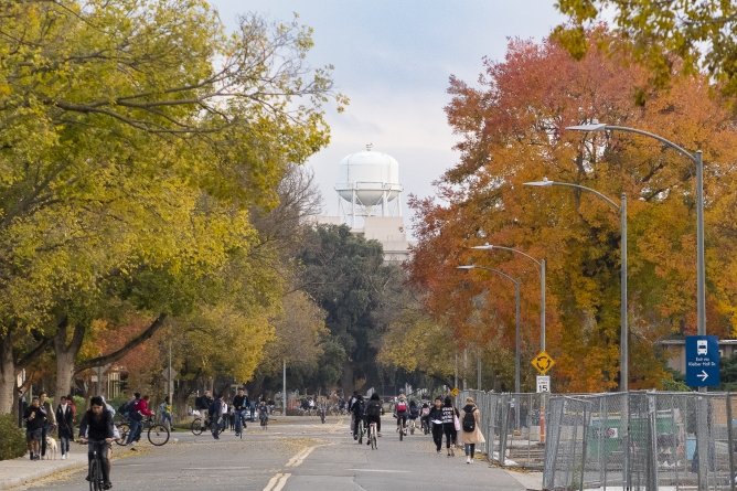 The UC Davis Experience from an international lens