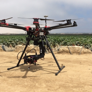 Using drones and predatory bugs, UC Davis researchers treat crop pests
