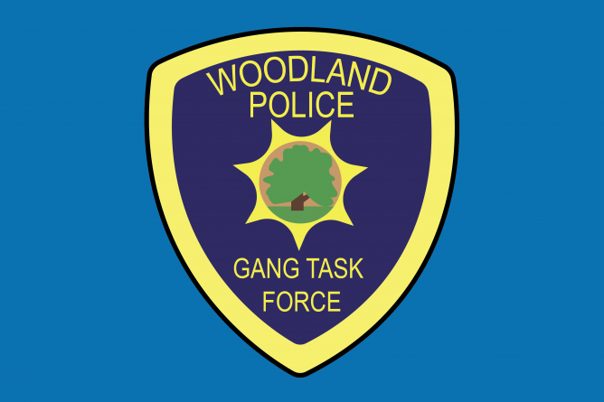 Gang task force organized by Woodland Police Department in response to recent surge in violence