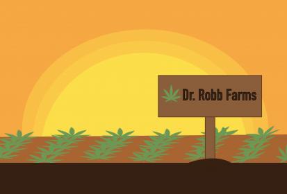 Aggie Profile: Dr. Robert Flannery, UC Davis alumni and Ph.D. of Pot