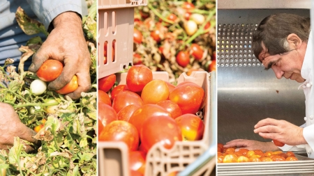 UC Davis prioritizes locally grown, raised food products for on-campus dining options