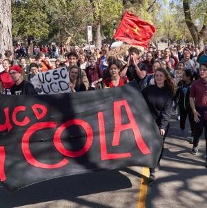Graduate students won't vote on a state-wide COLA strike