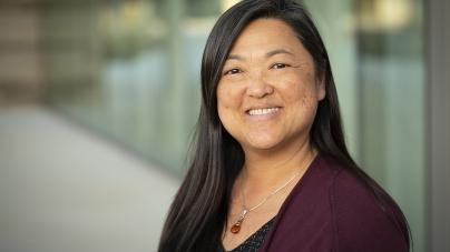 UC Davis nursing professor named as fellow in American Medical Informatics Association