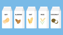 Why milk alternatives? Three students share their thoughts
