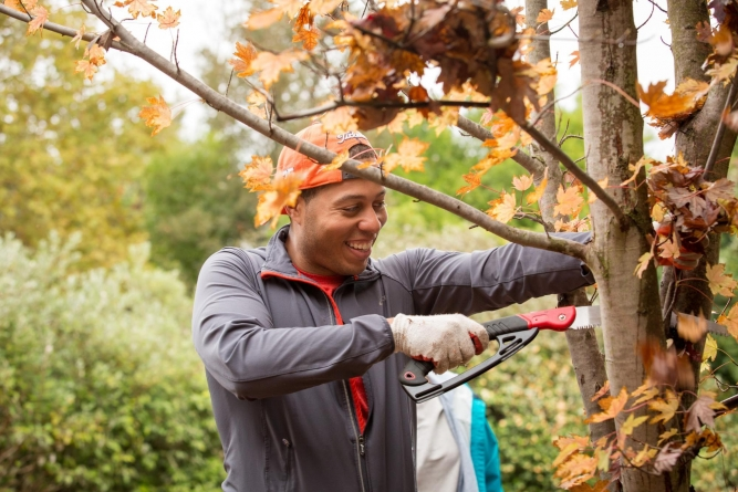 Tree Davis recruits volunteers to build Davis' 'urban forest' during the pandemic