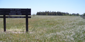 New trail and dog park opened at Grasslands Regional Park
