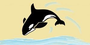 Study analyzes a decade of necropsies from stranded killer whales