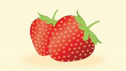 UC Davis Strawberry Breeding Program releases latest strawberry varieties: UCD Finn and UCD Mojo