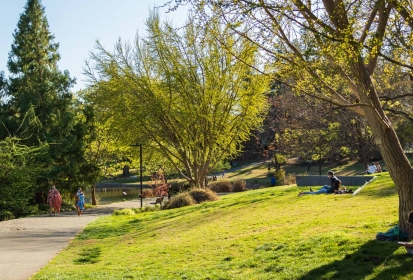 A guide to Davis' spring plants and animals