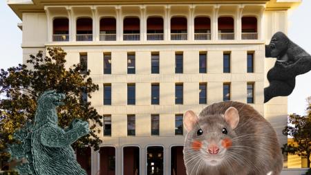 UCD genetics department starts making new animals 'just for fun'