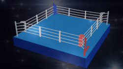 Are celebrity boxing matches ruining the sport?