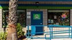 Local cannabis dispensaries take pandemic safety precautions