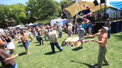 Whole Earth Festival to return to its roots